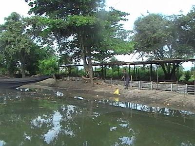 Vendo Finca Agropecuaria En Espinal