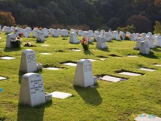 4 Gaveta Serv Funerarios Parq. Memorial Gayoso Meses Sin Int