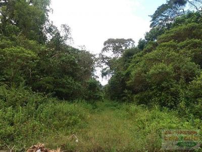 Terreno A Venda Em Peruíbe, Jardim Guaraú Garça Vermelha - 0585