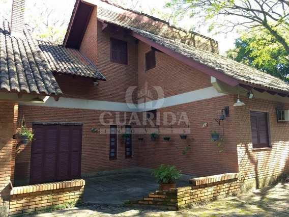 Chacara - Vila Nova - Ref: 151867 - V-151867