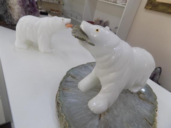 Urso Polar Em Onix Branco