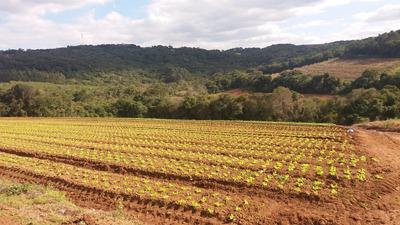 J Chacaras Plainas De 1.004 Mts Pronto Para Construir 45 Mil