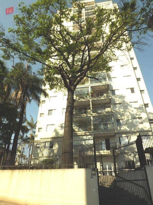 Apartamento 3 Dormitórios À Venda, Gopoúva, Guarulhos. - Ap0756