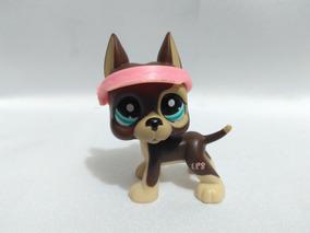 Great Dane #8172 Littlest Pet Shop Lps Littlelest P$
