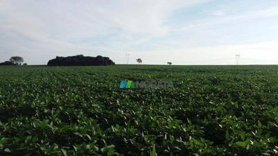 Fazenda Lavouras 399 Ha Patrocínio (mg) - Codigo: Fa0150 - Fa0150