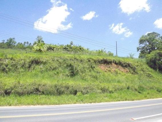 Terreno À Venda, 29576 M² Por R$ 369.000,00 - Pomerode Fundos - Pomerode/sc - Te0285