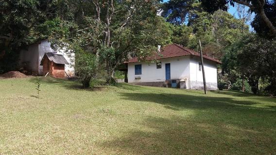 Rural Para Venda, 4 Dormitórios, Palmares - Paty Do Alferes - 1882