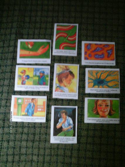 Lote De 09 Figurinhas O Corpo Humano Ed. Uned 1995 Raras