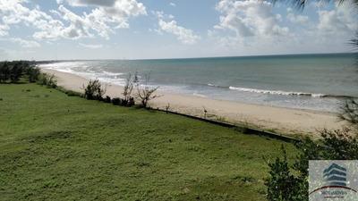 Área Beira Mar A Venda Em Touros, Próximo Vila Galé