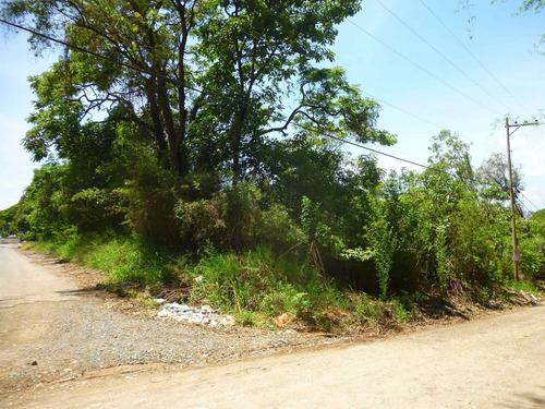 Imagem 1 de 18 de Terreno A Venda, Colinas De Indaiatuba Ii, Indaiatuba - Tr01631 - 4229513