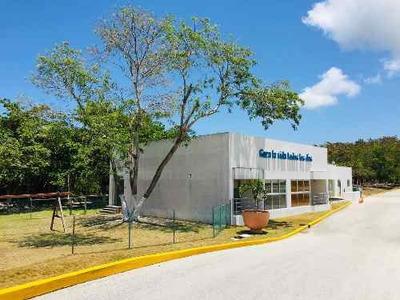 Oficinas Comerciales, Amplios Espacios Y Áreas Adaptadas Para Divesros Tipos De Emresa.