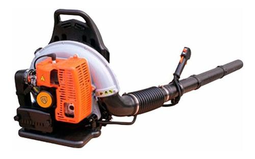 Soplador Tipo Mochila 2 Tiempos 63cc Lusqtoff Eb-650 Naftero