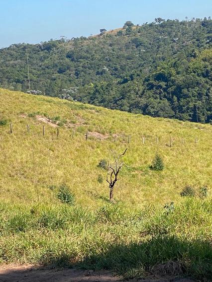 51c Vendo Terreno Em Santa Isabel