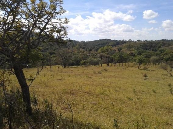 Terreno / Área Para Comprar No Vereda Em Ribeirão Das Neves/mg - 1519