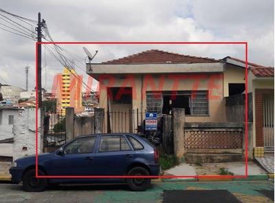 Terreno Em Casa Verde - São Paulo, Sp - 320487