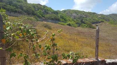 Terreno Em Búzios, Nísia Floresta/rn De 0m² À Venda Por R$ 695.000,00 - Te210550