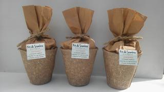 Kit Siembra Ecológico -maceta Biodegradable -