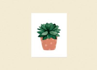 Cuadro Cactus X 2