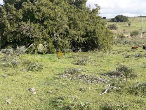 Campo En Garzon - Ideal Para Uso De Descanso - Consulte!!!!- Ref: 3606