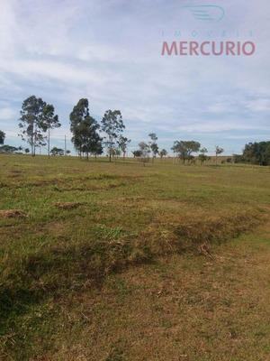 Terreno Residencial À Venda, Centro, Iacanga - Te0790. - Te0790