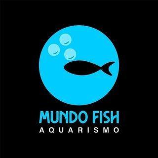 Imagem 1 de 1 de Serviços De Aquarismo