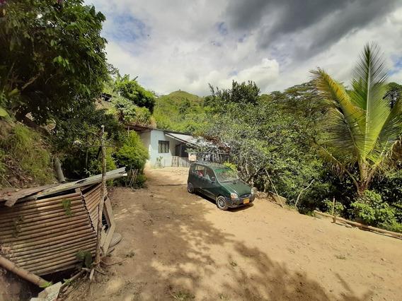 Finca En Venta, Veredala Martinica, Ibagué