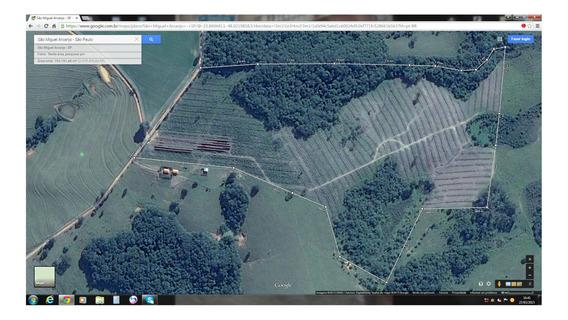 Sitio De 8 Alqueires , Valor 750 Mil , Com Agua Energia