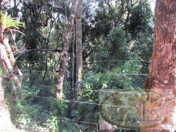 Terreno Para Venda Em Campos Do Jordão, Alto Do Capivari - 02