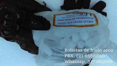 Bolsas De Hielo Seco.  Ice Cool. Dry Ice