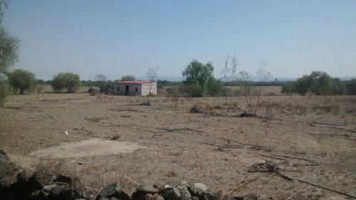 Venta Rancho En Edo De Hidalgo Por Huichapan 214 Has