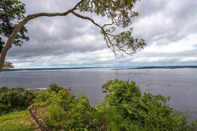 Terreno Ideal Para Porto Em Manaus Com 400m De Frente Para O Encontro Das Aguas. - Porto - 34053286