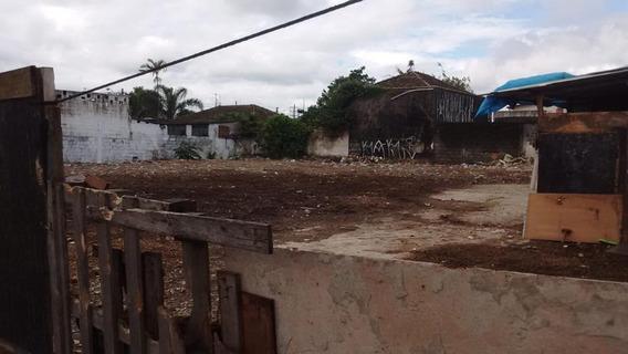 Terreno Em Vila Margarida, São Vicente/sp De 0m² Para Locação R$ 6.000,00/mes - Te326234