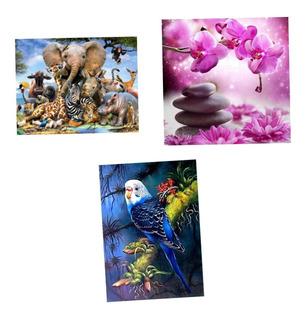 3 Set De Pinturas A Óleo De Flor Animal Elefante Águila