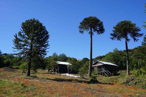 Imagen 1 de 9 de Complejo De 4 Cabañas En Corralco.