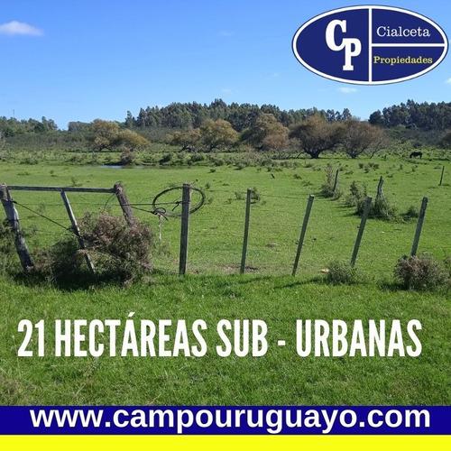 Campo De 21 Hectáreas Sub Urbanas