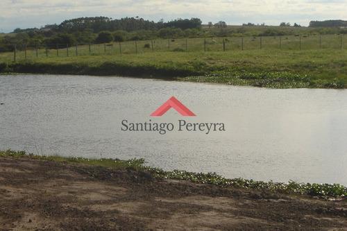 Chacra En Punta Del Este- Ref: 4764