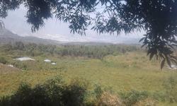 Vendo Terrena Grande En San Vicente Pacaya