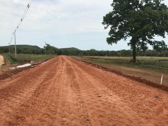 Fazenda Para Venda Em Nobres, Zona Rural De Bom Jardim - 859472