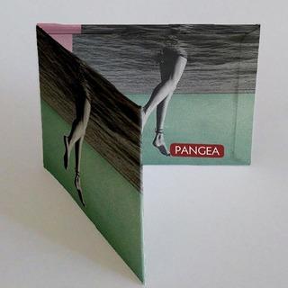 Pangea Gambas Billetera De Tyvek