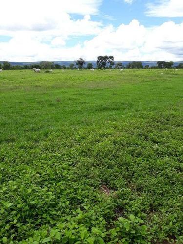 Ótima Fazenda Brasilandia , Terra Vermelha,plana  450 Hectares 3.600,000,00 - 38053