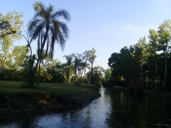 Lote Delta Tigre Isla -cuota Pesos -con Escritura -dueño Dir