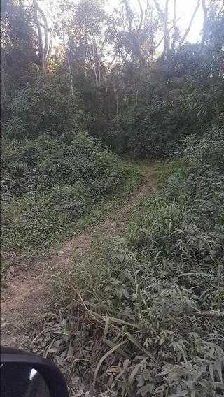 Sítio Em Nha Luz, Salesópolis/sp De 97023m² 1 Quartos À Venda Por R$ 270.000,00 - Si441900