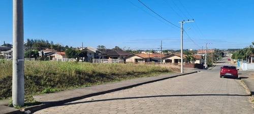 Terreno - Jardim Elizabeth - Ref: 307 - V-307