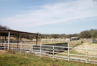 Zacatecas Rancho Terreno De 240 Hectareas Agricola Y Ganadero $123