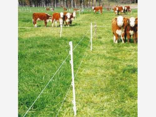 Rancho En Venta Bordo De Carretera Para Crianza De Animales
