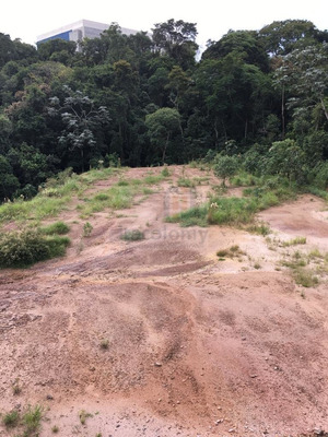 Ref: 3441 Santana De Parnaiba- Terreno 2.500 M2 Plano Para V - 3441