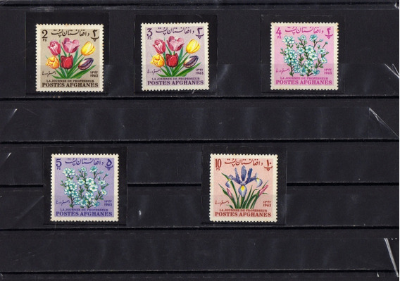 Serie Completa Tematica Flores