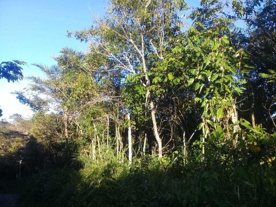 Terreno 420m² A 10km De Guaramiranga