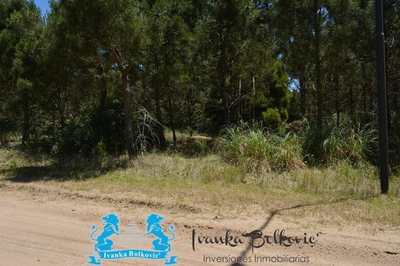 Venta Terreno Pinamar Lote Norte Playa Ref 2400