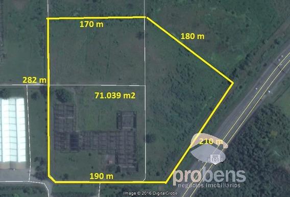 Terreno Em Zona Industrial - Cubatão - 441